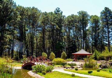 Jardim Botânico de Brasília abre as portas para concerto de orquestra barroca