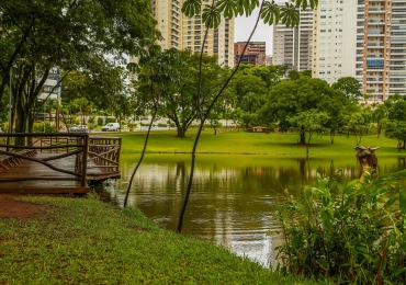 Parques de Goiânia podem ganhar lixeiras subterrâneas