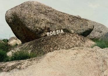 Poesia Experimental Portuguesa é tema de exposição inédita em Brasília