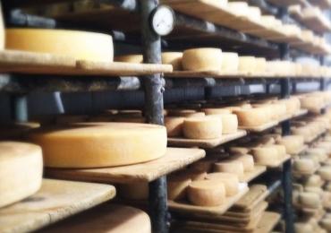 Um roteiro por queijos e vinhos do Cerrado entre Goiânia e Brasília