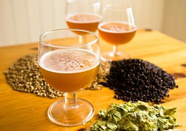 UFG realiza curso prático de produção de cerveja artesanal no próximo sábado