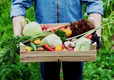 15 feiras orgânicas em Brasília para se alimentar de maneira saudável