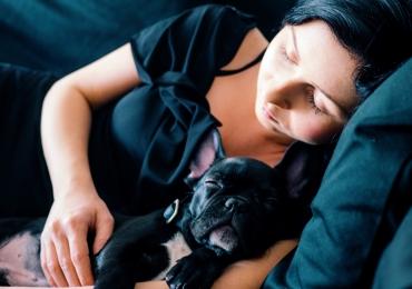 Mulheres dormem melhor com cães do que com parceiros, diz estudo