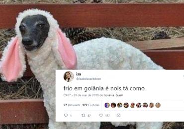 Frio em Goiânia é garantia de duas coisas: Pecuária e memes nas redes sociais; confira os melhores