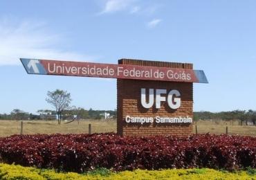 UFG abre 59 vagas de estágio remunerado em Goiânia
