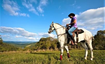Conheça a Vila Hípica Werner Haberkorn, um paraíso para os amantes de cavalos no Brasil