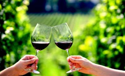 Wine tour promove passeio em videiras, degustação de vinhos e almoço harmonizado pertinho de Brasília