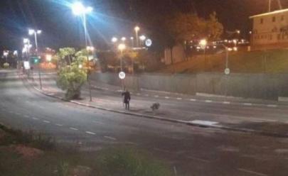 Internauta diz ter visto 'Palhaço Assassino' em Goiânia