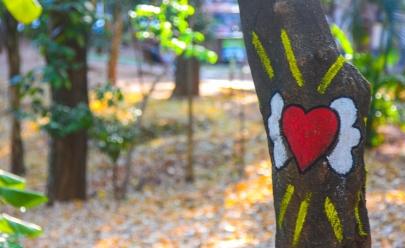 Goiânia é palco para o projeto Moda e Arte nos Parques