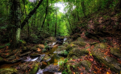 Reserva Vagafogo, em Pirenópolis, oferece brunch com 45 produtos naturais, circuito de aventuras e trilhas por paisagens deslumbrantes