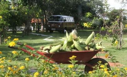 Meditação, yoga e alimentação saudável num só lugar em Goiânia