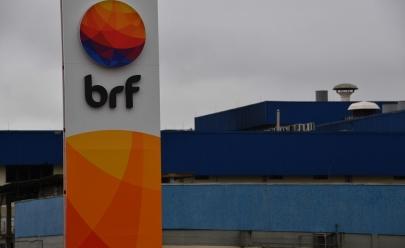 BRF recolhe 164,7 toneladas de frango por possível presença de salmonela