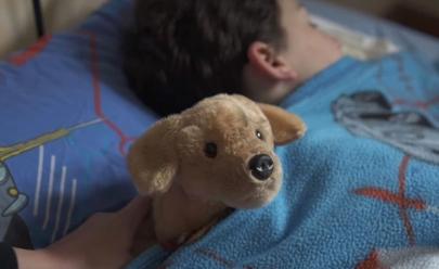 Este vídeo é um lembrete do porquê os animais não são presente de natal