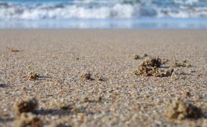 Microscópio revela a beleza oculta dos grãos de areia