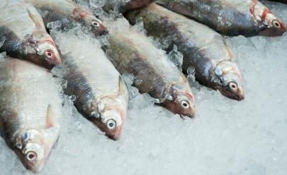 Variação de preços de pescados chega a 45% em Goiânia, afirma Procon
