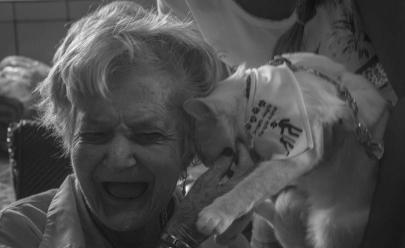 Animais são treinados para participarem de ações terapêuticas em asilos em Goiânia