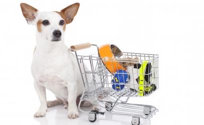 Você precisa conhecer o shopping exclusivo para cachorros em Brasília
