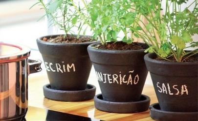 7 fatos que vão te convencer a fazer a sua própria horta orgânica em casa