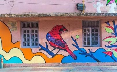 Grupo goiano Bicicleta sem Freio realiza trabalho incrível na Índia