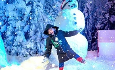 Um mundo de neve para brincar em Goiânia