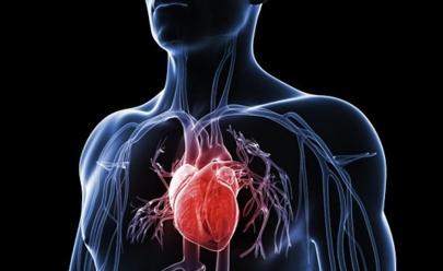 UFG desenvolve método simples e barato para diagnosticar problemas cardiovasculares