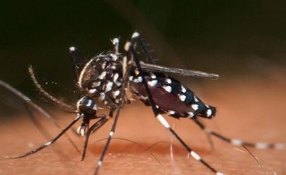 Novo teste para diagnosticar Zika Vìrus custará R$1