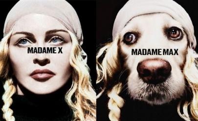 Cachorro recria as caras de bocas de Madonna e viraliza na web