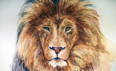 A história de Guru, um leão solto pelas ruas de Goiânia