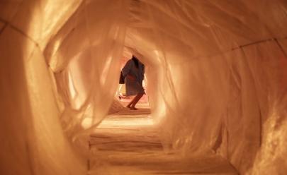 Esôfago gigante ocupa Vila Cultural Cora Coralina em Goiânia