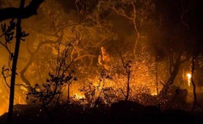 Devido a incêndio, Parque da Chapada dos Veadeiros é fechado para visitação