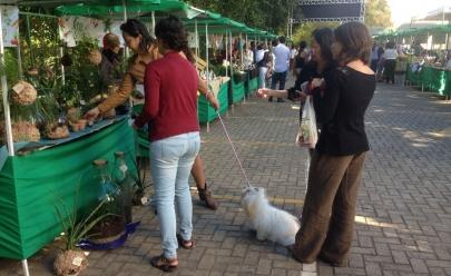 Shopping de Goiânia terá última edição do ano da Feira de Orgânicos