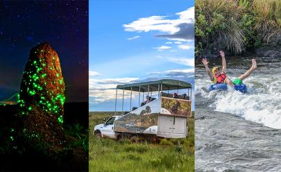 Safári, bioluminescência e muita aventura no Parque Nacional das Emas em Goiás