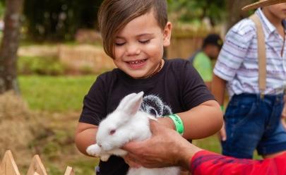 Evento promove caça aos ovos e agita a Páscoa da criançada em Taguatinga