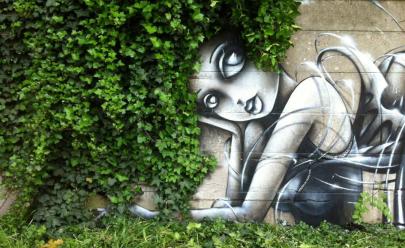 Evento gratuito abre espaço para grafite e faz oficina de jardinagem em Goiânia