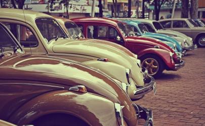 Exposição gratuita com mais de 800 carros colecionáveis acontece próximo à Brasília