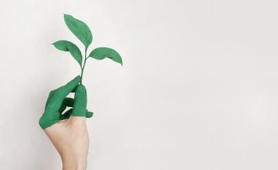 Goiânia recebe Fórum-Ibero-Americano de sustentabilidade nesta quarta-feira