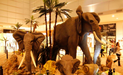 Shopping Passeio das Águas traz clima da África para Goiânia com a exposição África - Animais Selvagens