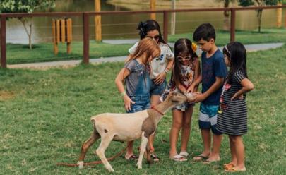 10 motivos para sair de casa com as crianças em Goiânia