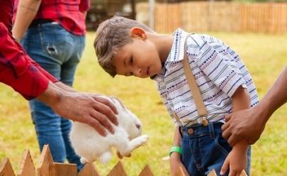 Fazenda interativa em Brasília proporciona o contato das crianças com o ambiente rural