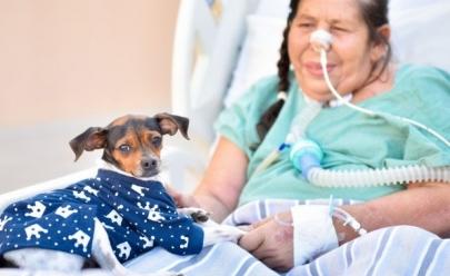 Paciente internada em Goiânia recebe visita surpresa do seu cãozinho e se emociona