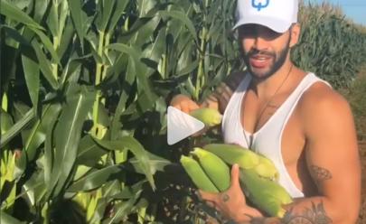 Gusttavo Lima para o carro para roubar milho na estrada e chama atenção de internautas