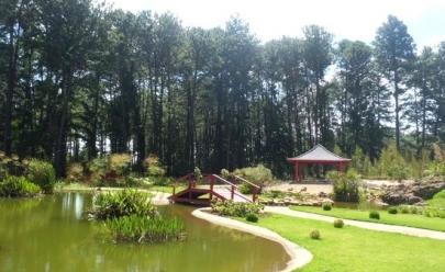 6 motivos para visitar e se apaixonar pelo Jardim Botânico de Brasília