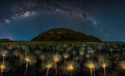 Fotógrafo brasileiro ganha concurso internacional com foto do cerrado