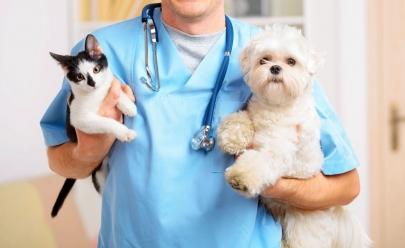Goiânia recebe o primeiro hospital público veterinário