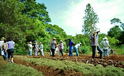 Estudantes e comunidade se juntam para realizar a recuperação de área florestal em Goiânia