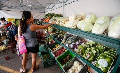 Brasília recebe feira orgânica neste sábado