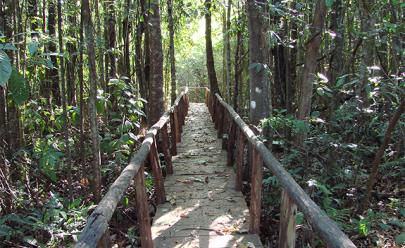 Lugares para relaxar e desconectar do celular e das redes sociais em Goiânia e arredores