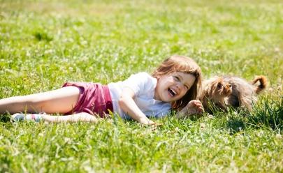 Feira para animais de estimação já tem data marcada em Brasília