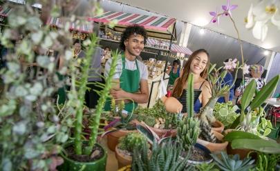 Mercadinho do Brasília faz edição do Dia das Mães com feira orgânica e oficinas gratuitas