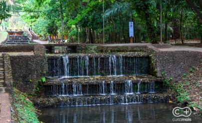 Evento de fotografia coletiva ao ar livre e piquenique de graça acontece em Goiânia